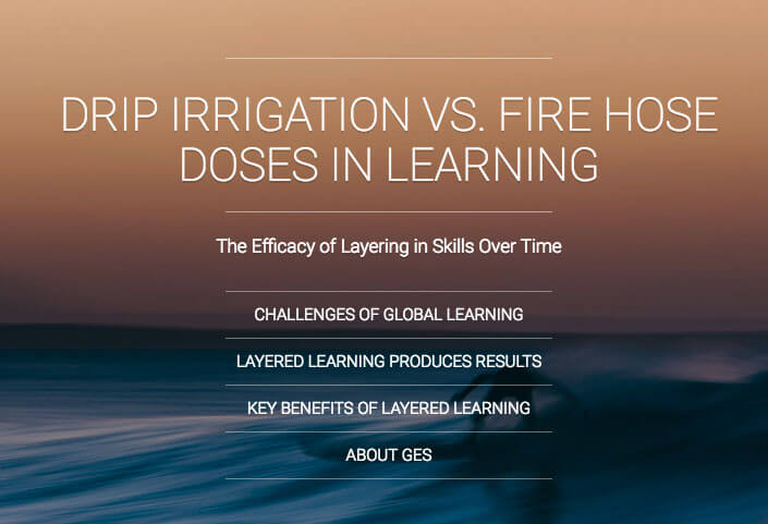 Drip Irrigation vs. Fire Hose Learning: Doses in Learning eBook